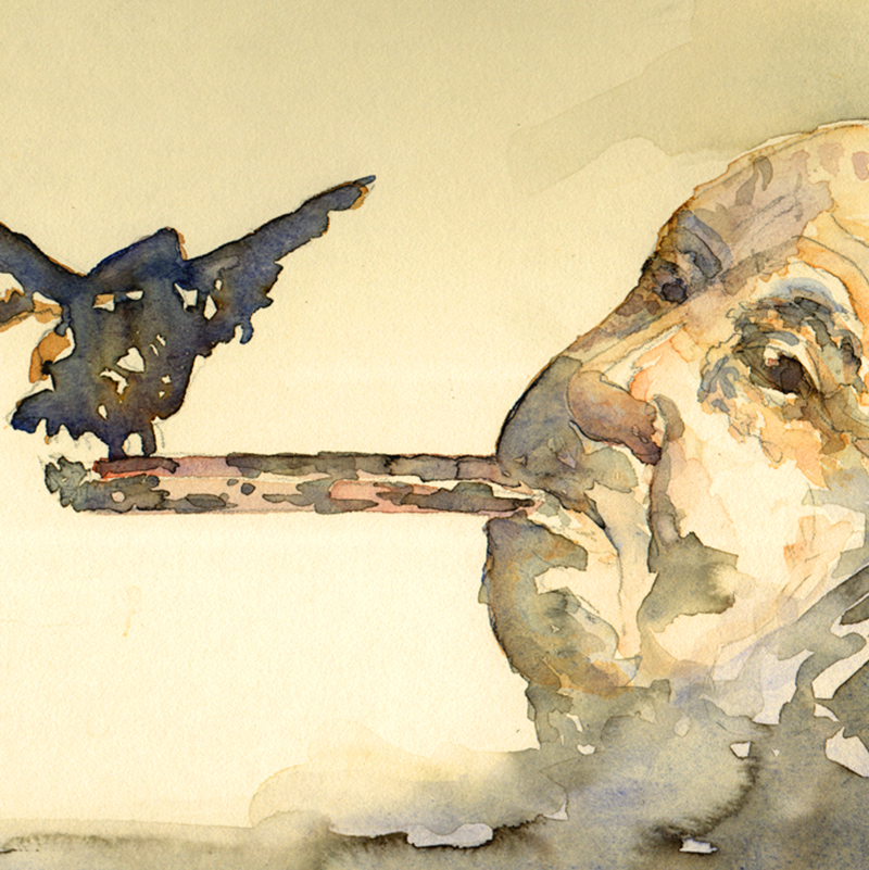 Alfred Hitchcock- The Birds Watercolor