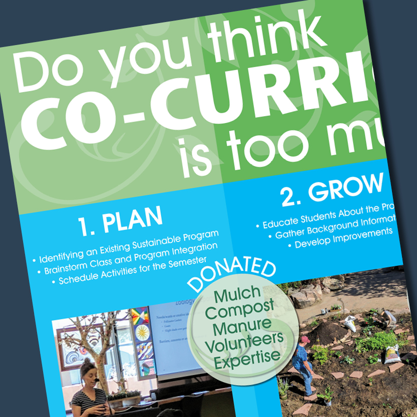 Sustainability - Co-Curriculum Poster for an Event- Adobe InDesign