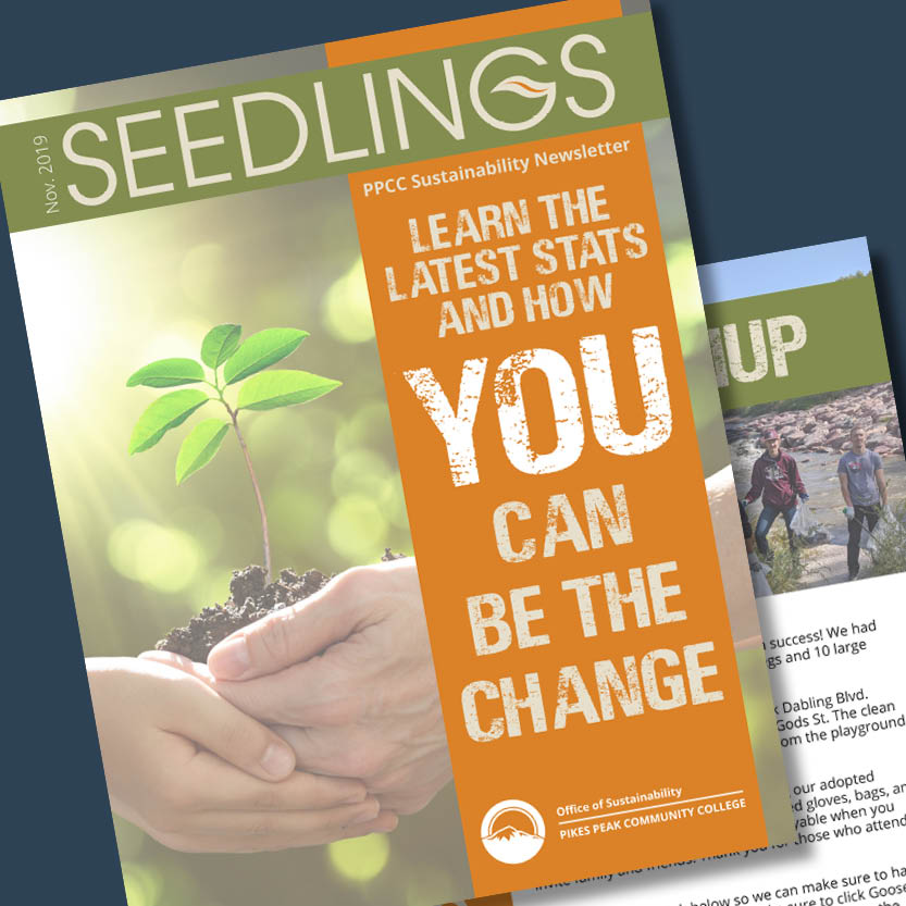 PPCC Sustainability Branding Newsletter Adobe InDesign - SEEDLINGS logo
