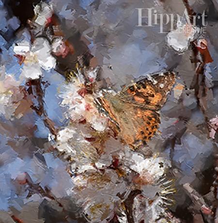 Butterfly oil