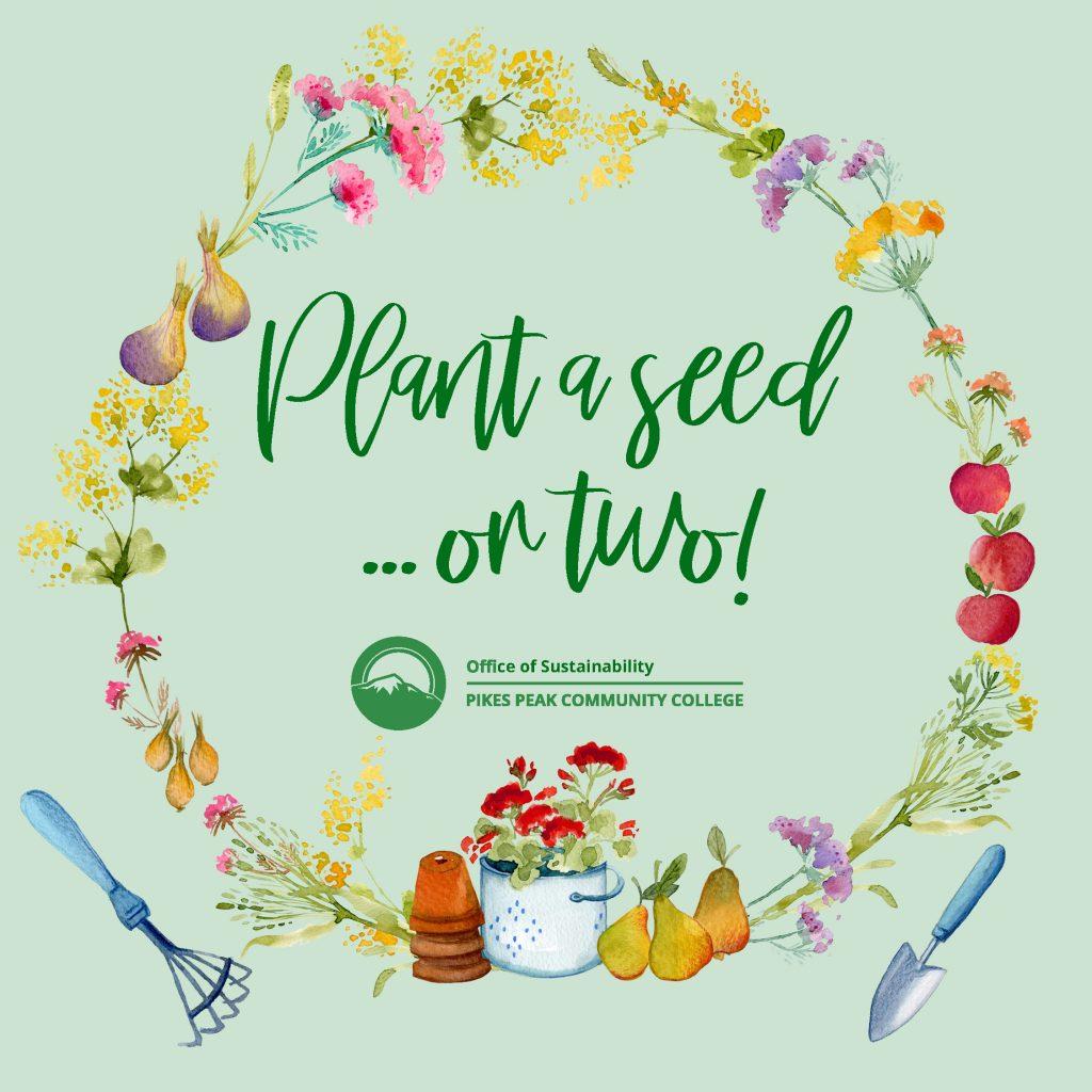 Planta Seed Floral Wreath