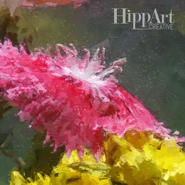Macro Pink bloom